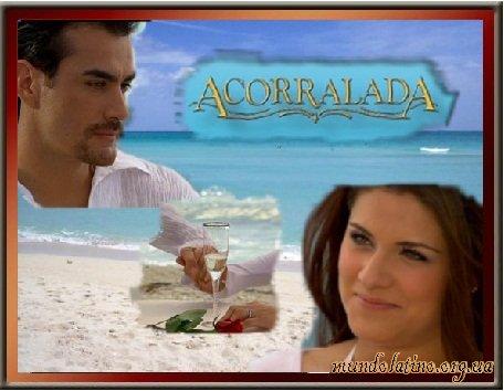 смотреть сериал латиноамериканский онлайн: