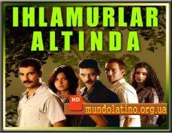 Под сенью лип  Турецкий сериал смотреть онлайн