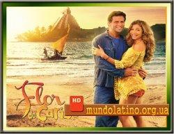 Цветок Карибского Моря - Flor do Caribe смотреть онлайн