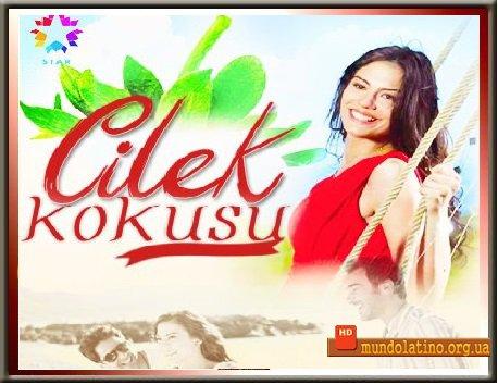 Турецкий сериал запах клубники все серии