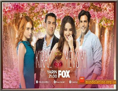 Турецкий сериал достаточно с субтитрами