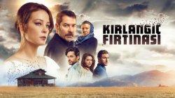 Шторм ласточки турецкий сериал